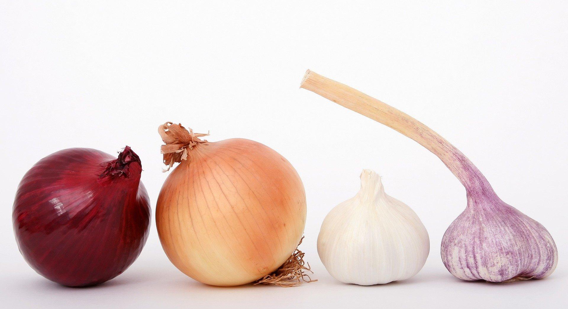 The Onion gir underholdning i pausen!